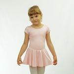 Basic Short Sleeve Nylon Skirted Leotard